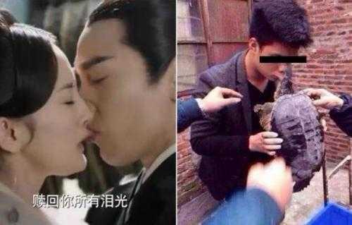 高圆圆床上激战刘恺威 赵又廷与高圆圆图片