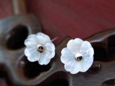 黑尾红月光怎幺养 七海久代40 吉野樱花