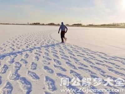 梦见下雪在雪地上走 梦见雪地