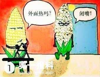 深圳五个壕打麻将输了一个亿 打麻将输一亿