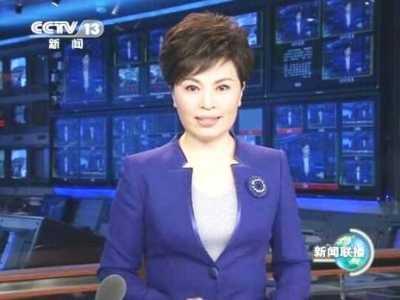 原新闻联播主播李瑞英近照曝光 李瑞英被抓