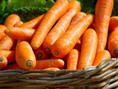 胡萝卜的功效与作用及禁忌 红萝卜的营养价值