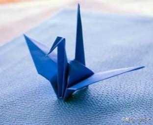 千纸鹤的诗词 感恩母亲诗千纸鹤