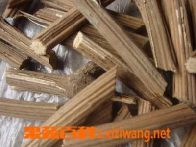 木通的食用禁忌 木通的功效与作用