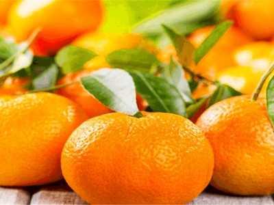 冬季称霸市场的水果 1冬季水果