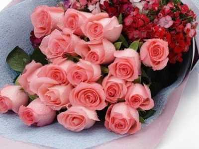 十九朵粉玫瑰代表什幺意思 19朵粉玫瑰