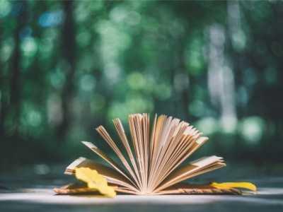 一生值得反复读的5本书 值得反复读的书