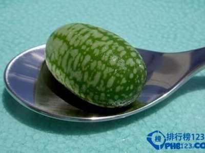 世界上最小的西瓜图片 佩普基诺