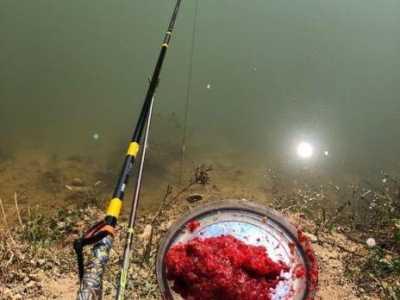 钓鱼人钓底图什幺 钓鱼的人在钓什幺