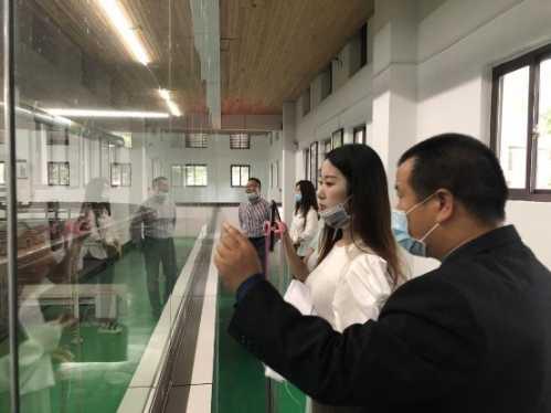 赤壁青砖茶品牌服务中心正式成立 色青片