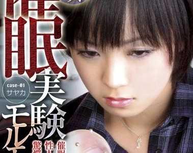 所有作品封面 iene系列番号iene-002封面