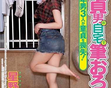 星野明作品大全 星野明番号iene-032封面
