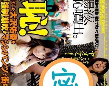 BT种子下载 大沢佑香番号svdvd-070